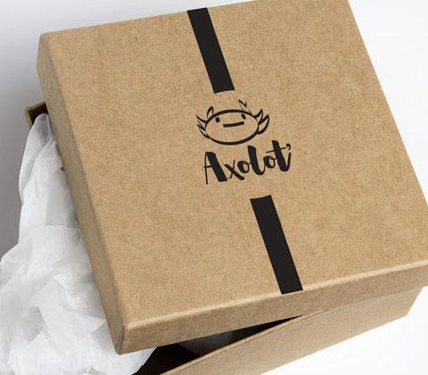Axolot' © Julie Vo Van Tao