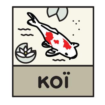Koï © Pisciculture de Villette